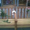 bench19